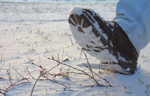 boot in snow image