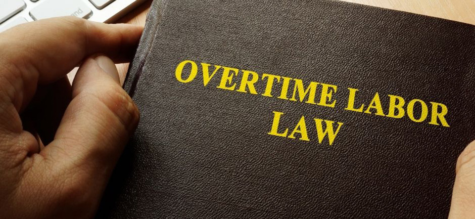 Person reading an overtime labor law book